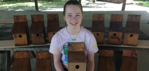 Arl-Fairfax bird houses_500x240