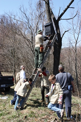 Arlington Fairfax Chapter_Boy Scouts Bat Project