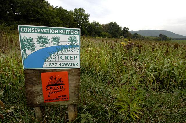 CREP sign