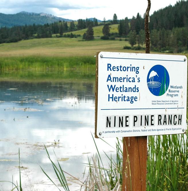 Wetlands Reserve Program - credit USDA NRCS