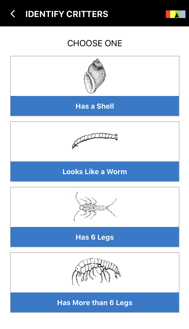 Creek Critters: Interactive identification key