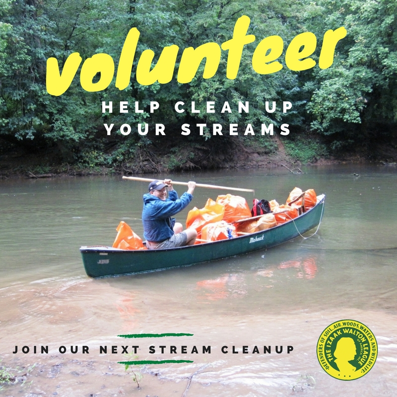 Stream Cleanup: Volunteer
