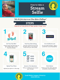streamselfie-infographic-small