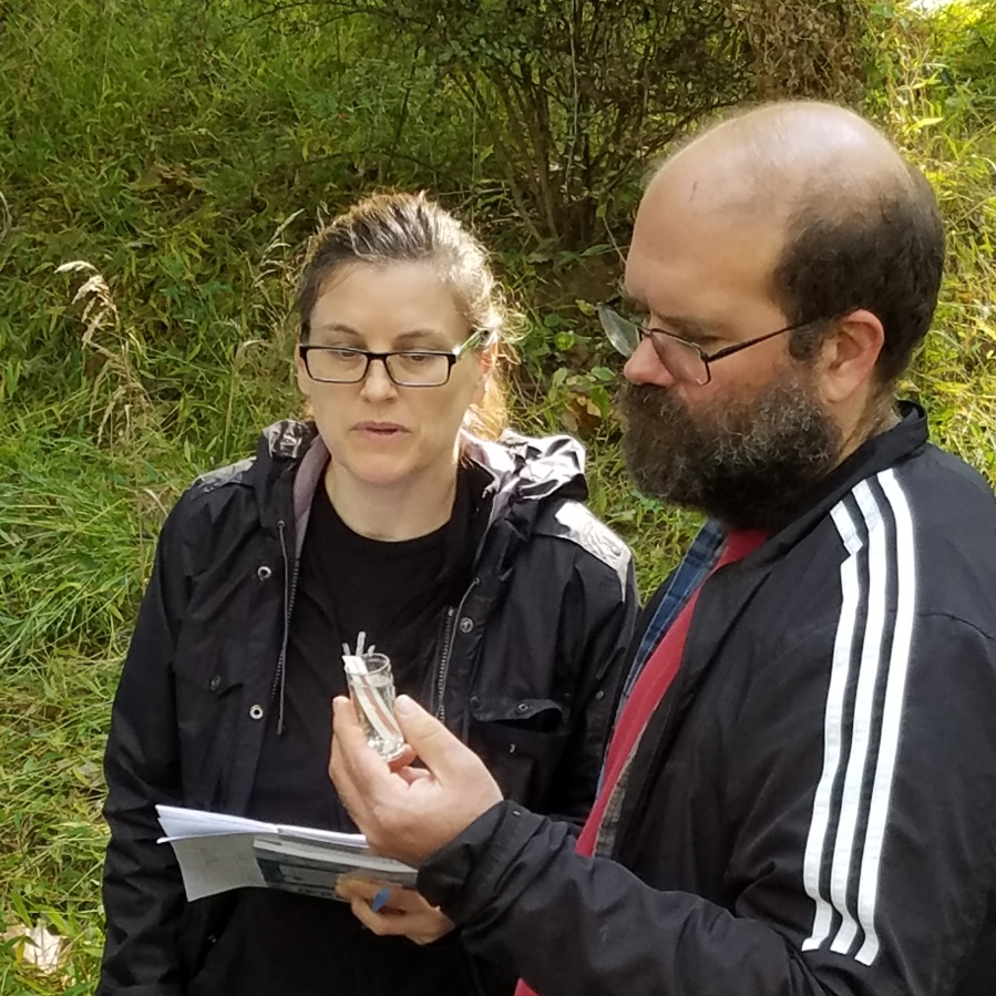 Chemical monitoring for stream health