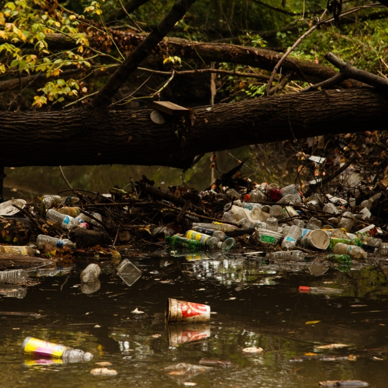 Anacostia River pollution_credit Chesapeake Bay Prog
