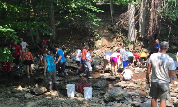 Students from the Frederick County Outdoor School searching for macroinverebrates.