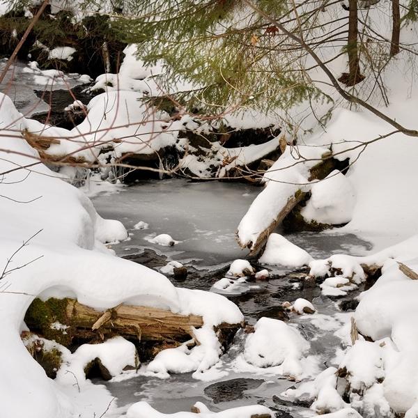frozen stream in VT_credit Dave Smith sq