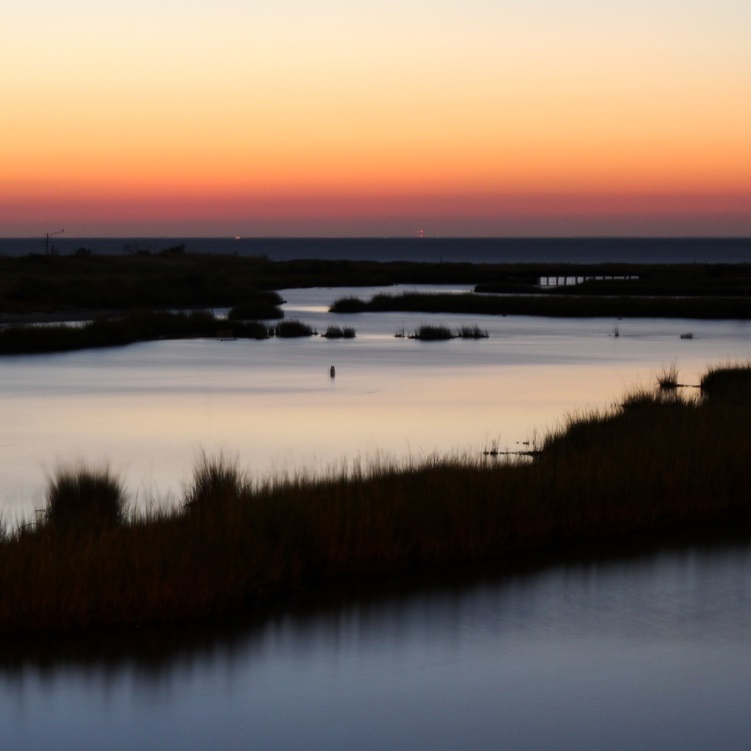 marsh Tangier Island_credit Chesapeake Bay Progrogram