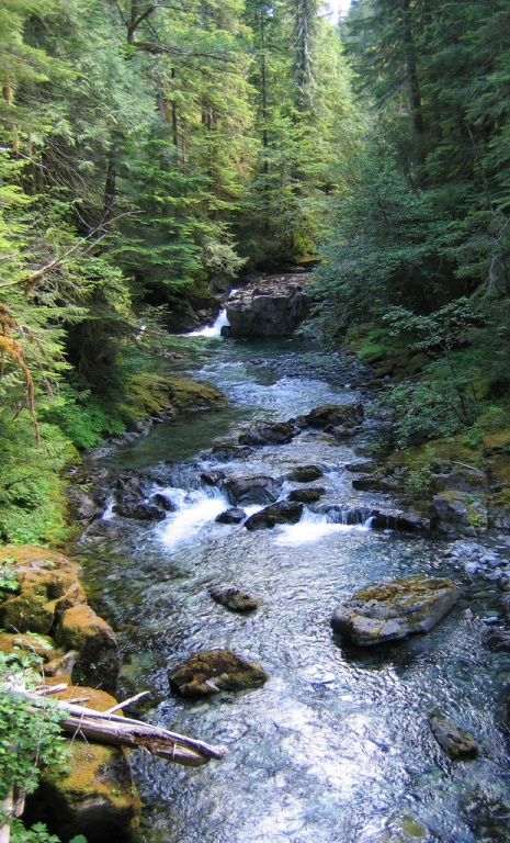 Opal Creek (credit: USFWS)