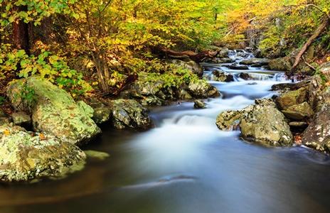 Shenandoah Natl Park_Whiteoak Canyon_credit N Lews-NPS
