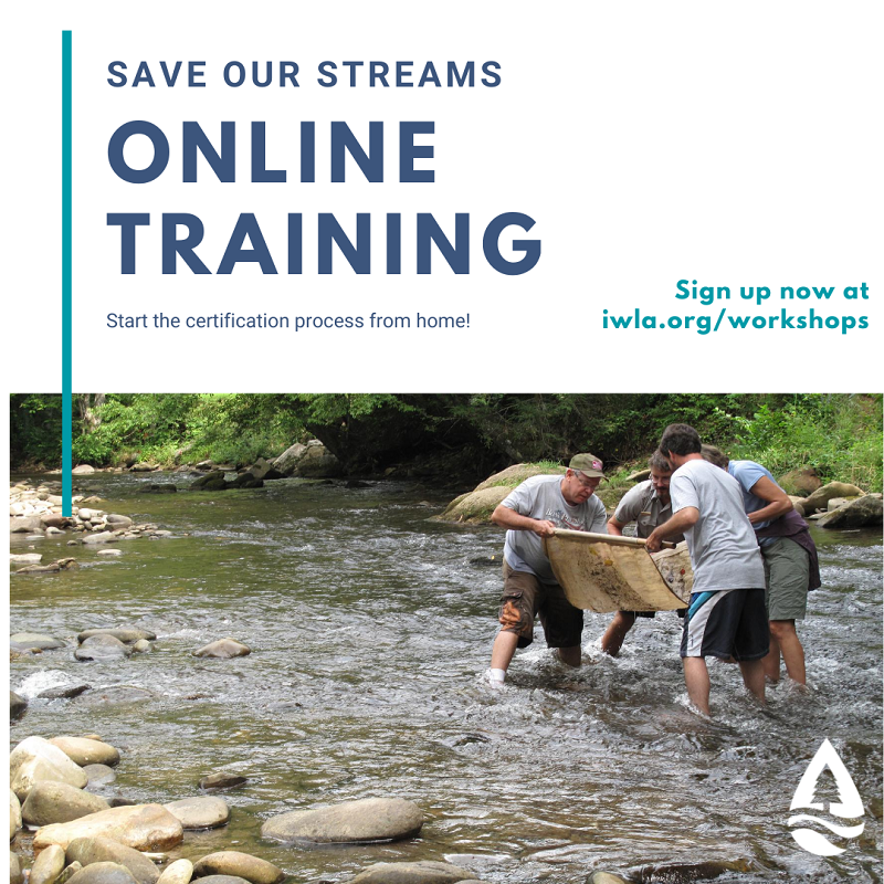 Save Our Streams online training