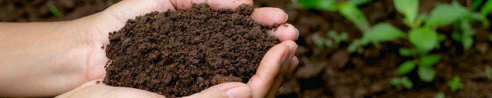 Healthy Soil, Healthy Water
