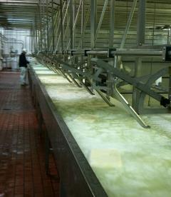 Wisconsin cheese factory. Credit Jon Zacherle.