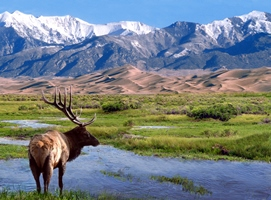 Great Sand Dunes Wilderness_NPS