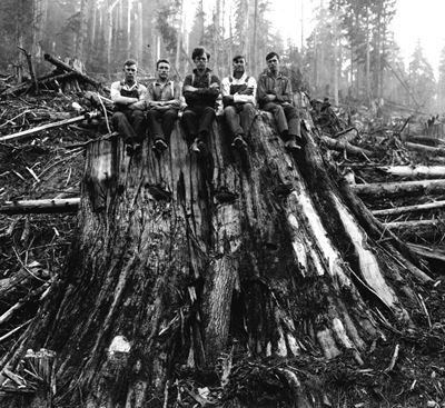 Men Sitting on a Red Cedar Stump WA 1925_USFS