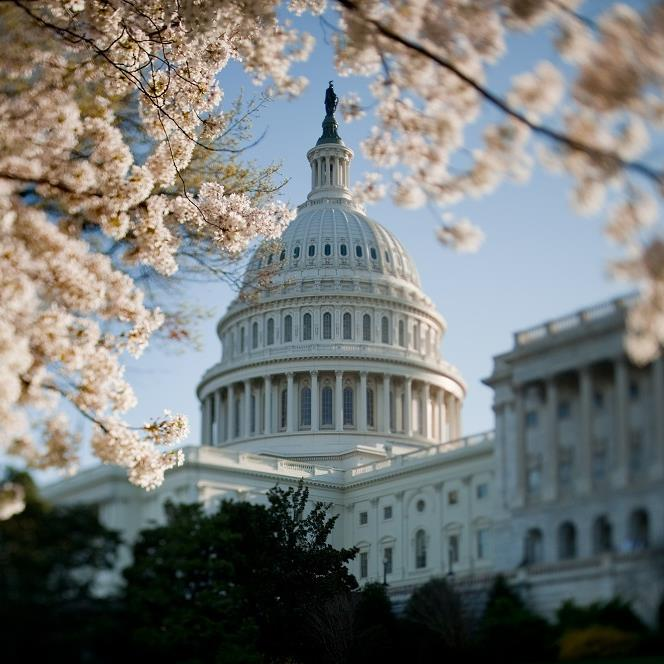 U.S. Capitol in spring - credit Architect of the Capitol