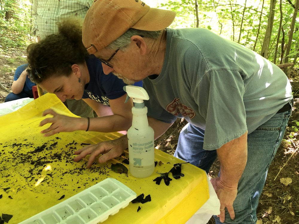 Chesapeake Monitoring Outreach Coordinator Emily Bialowas teaches a new stream monitor to ID stream bugs
