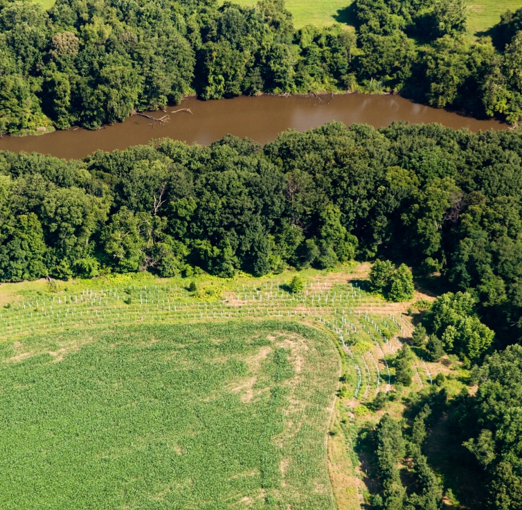riparian forest buffer_MD_credit Will Parson-Ches Bay Prog