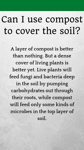Don't use compost to cover the soil