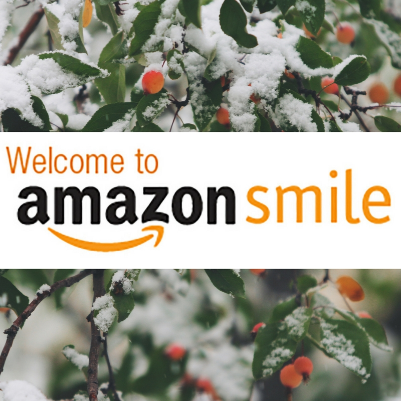 AmazonSmile_holiday