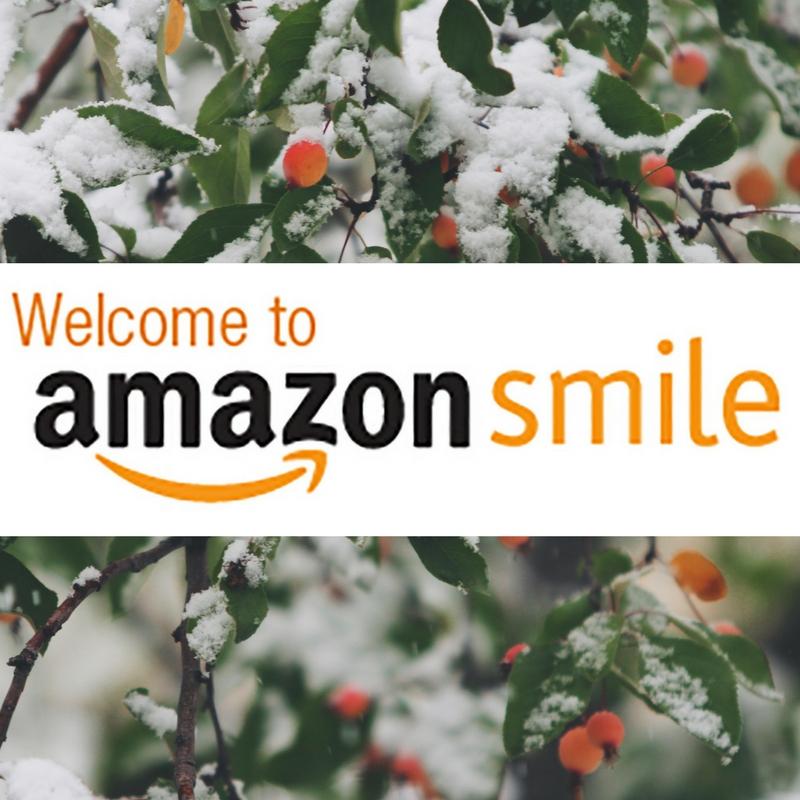 AmazonSmile_holiday