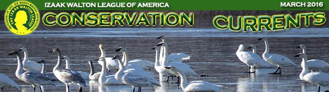 March 2016 Conservation Currents masthead. Photo credit: Jessica Bolser/USFWS