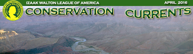 Masthead with Grand Canyon image for April 2016 issue of Conservation Currents