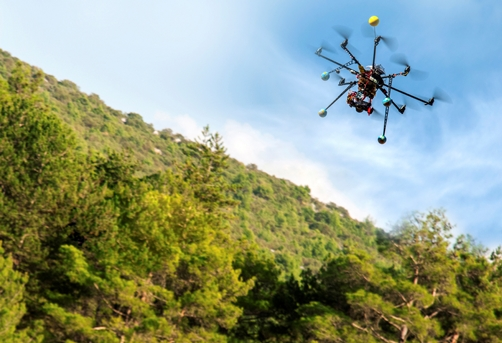 drone flying over forest_credit iStock