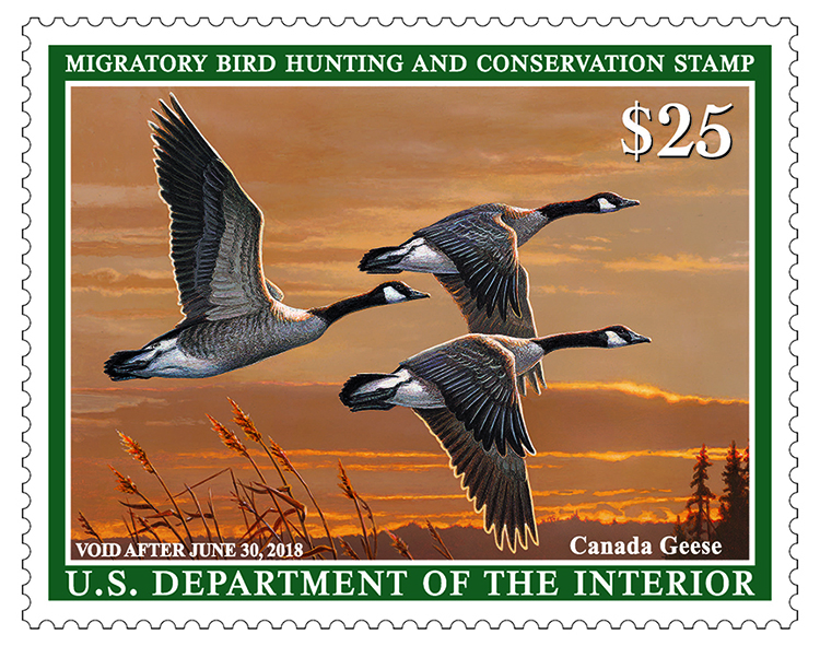 2017-2018 duck stamp