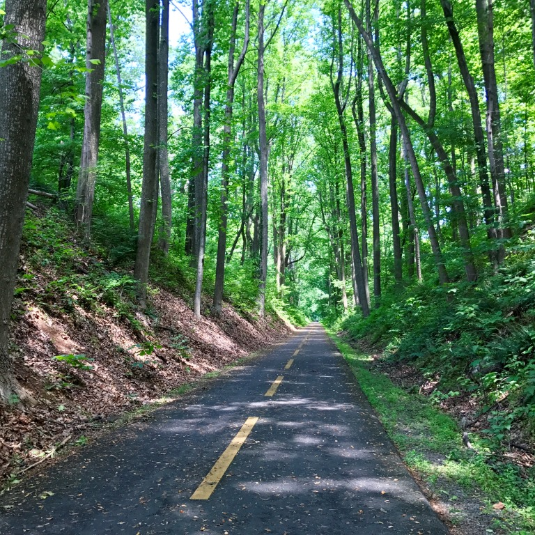 Washington and Old Dominion bike trail in Virginia_credit Joe Flood