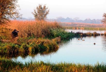 Wildlife Photography_credit Bob Wick BLM