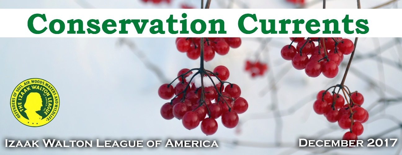 Conservation Currents Dec 2017 masthead