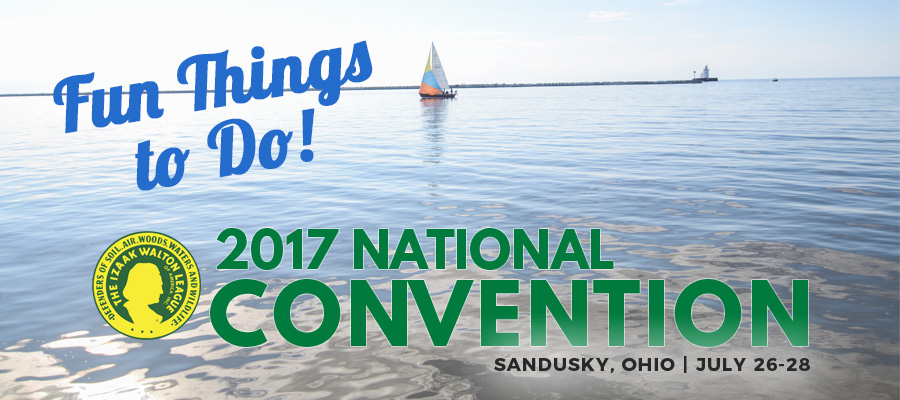 Fun Things to Do at Convention