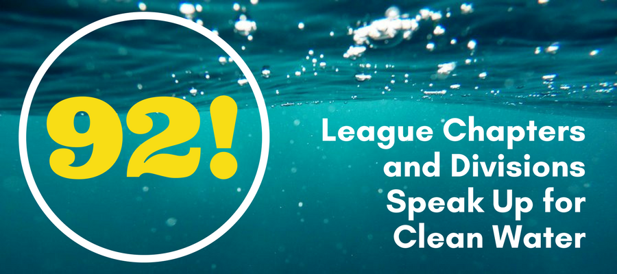 League Chapters Speak Up for Clean Water