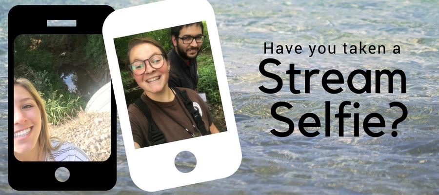 stream selfie