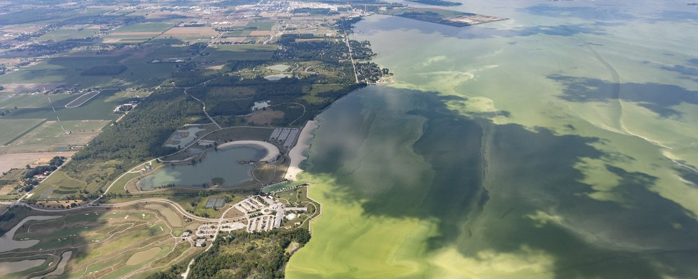 Algal bloom in Lake Erie - credit Ohio Sea Grant & Stone Lab