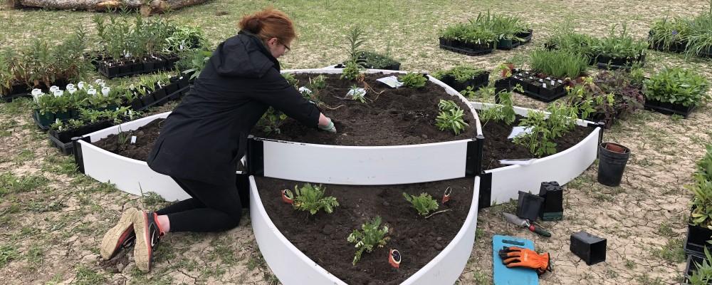 Chapter member working in garden