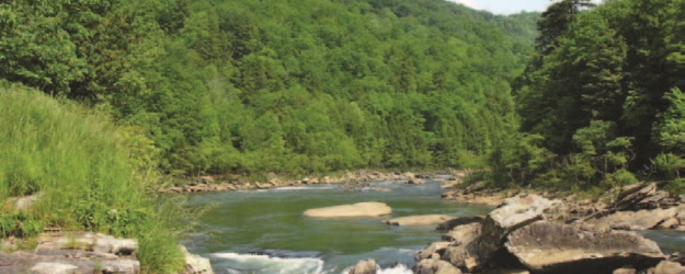 Gauley River in West Virginia - credit Dave Bier, National Park Service
