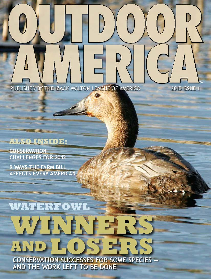 OA Cover 2013, Issue 1