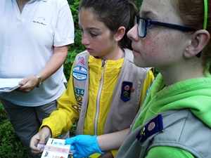 Fredericksburg Chapter Girl Scouts