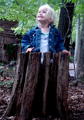Girl Playing in Tree Stump_Krisna Becker